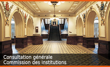 Consultation générale - Commission des institutions