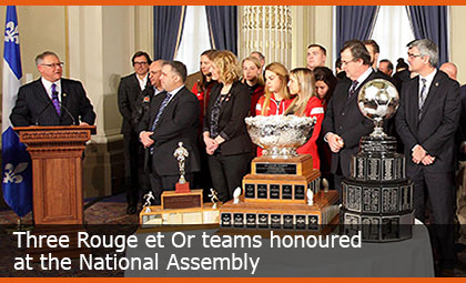 Three Rouge et Or teams honoured at the National Assembly